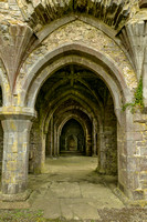 Kilcooley Abbey 3, Co Tipperary