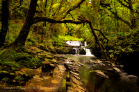 Clare Glens Co TIpperary